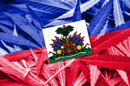 grass close up: Haiti Flag on cannabis background. Drug policy. Legalization of marijuana