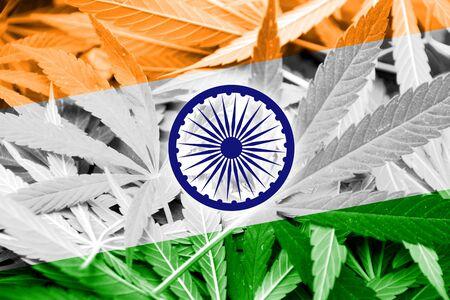 drug dealer: India Flag on cannabis background. Drug policy. Legalization of marijuana Stock Photo