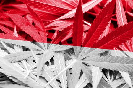 drug dealer: Indonesia Flag on cannabis background. Drug policy. Legalization of marijuana Stock Photo