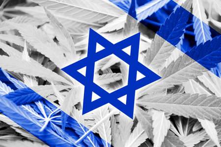 middle joint: Israel Flag on cannabis background. Drug policy. Legalization of marijuana