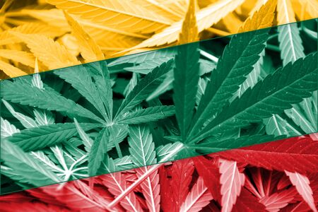 smuggling: Lithuania Flag on cannabis background. Drug policy. Legalization of marijuana Stock Photo