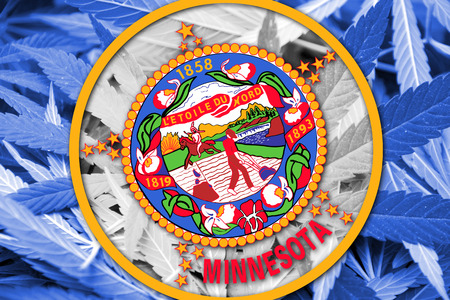 smuggling: Minnesota State Flag on cannabis background. Drug policy. Legalization of marijuana