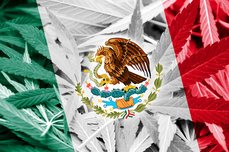drug dealers: Mexico Flag on cannabis background. Drug policy. Legalization of marijuana