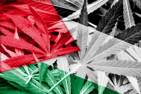 middle joint: Palestine Flag on cannabis background. Drug policy. Legalization of marijuana