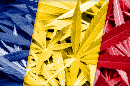 smuggling: Romania Flag on cannabis background. Drug policy. Legalization of marijuana