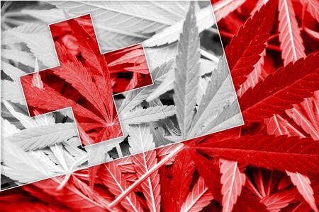 drug dealer: Tonga Flag on cannabis background. Drug policy. Legalization of marijuana