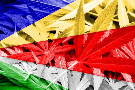 drug dealer: Seychelles Flag on cannabis background. Drug policy. Legalization of marijuana Stock Photo