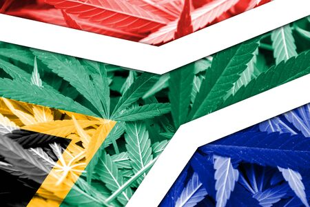south africa flag: South Africa Flag on cannabis background. Drug policy. Legalization of marijuana Stock Photo