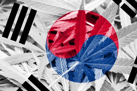grass close up: South Korea Flag on cannabis background. Drug policy. Legalization of marijuana