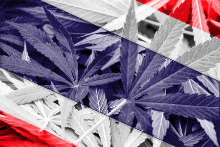 drug dealer: Thailand Flag on cannabis background. Drug policy. Legalization of marijuana