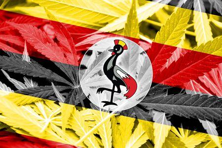 thc: Uganda Flag on cannabis background. Drug policy. Legalization of marijuana