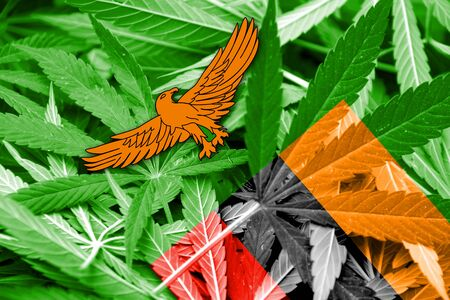 grass close up: Zambia Flag on cannabis background. Drug policy. Legalization of marijuana