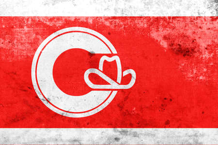 calgary: Flag of Calgary, with a vintage and old look