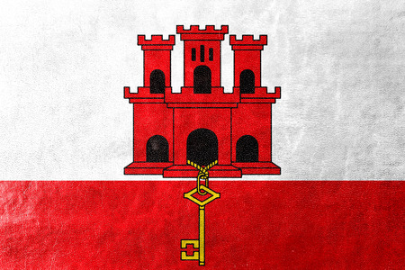 education policy: Flag of Gibraltar, painted on leather texture