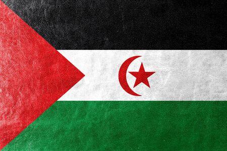 sahrawi arab democratic republic: Flag of Sahrawi Arab Democratic Republic, painted on leather texture Stock Photo