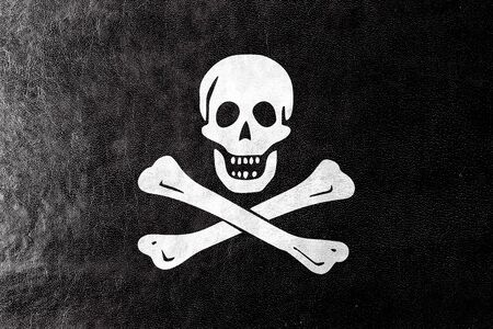 roger: The traditional Jolly Roger of piracy Flag, painted on leather texture