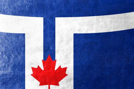 toronto: Flag of Toronto, painted on leather texture