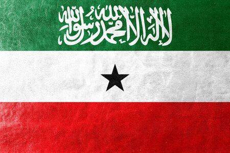 land mark: Flag of Somaliland, painted on leather texture