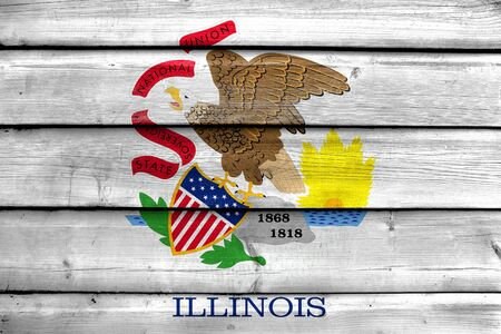 education policy: Flag of Illinois State, painted on old wood plank background