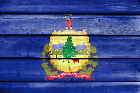 education policy: Flag of Vermont State, painted on old wood plank background