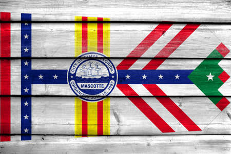 painted wood: Flag of Tampa, Florida, painted on old wood plank background Stock Photo