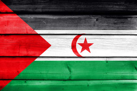 education policy: Flag of Sahrawi Arab Democratic Republic, painted on old wood plank background
