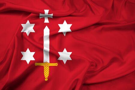 education policy: Waving Flag of Haarlem