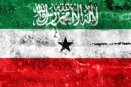somaliland: Flag of Somaliland, painted on dirty wall. Vintage and old look.