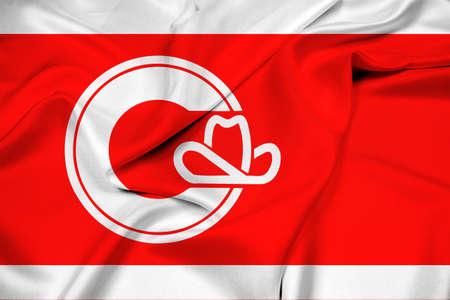 calgary: Waving Flag of Calgary