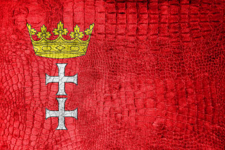 gdansk: Flag of Gdansk, Poland, , on a luxurious, fashionable canvas