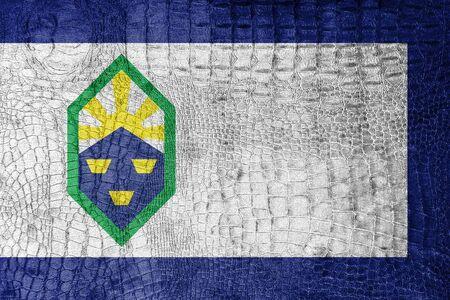 colorado springs: Flag of Colorado Springs, Colorado, on a luxurious, fashionable canvas