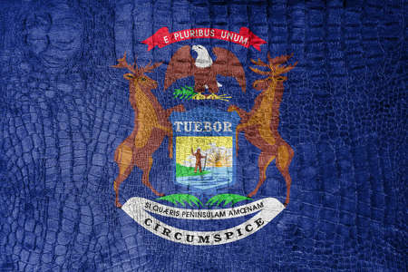 michigan flag: Flag of Michigan State, on a luxurious, fashionable canvas