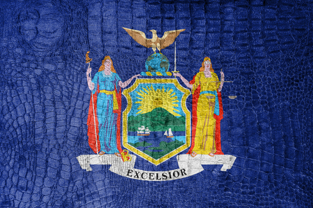new york state: Flag of New York State, on a luxurious, fashionable canvas