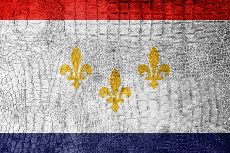 new orleans: Flag of New Orleans, Louisiana, on a luxurious, fashionable canvas