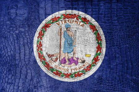 commonwealth: Flag of the Commonwealth of Virginia, on a luxurious, fashionable canvas Stock Photo