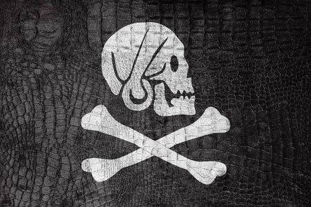 henry: Henry Every Pirate Flag, on a luxurious, fashionable canvas Stock Photo