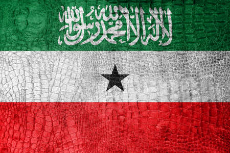 somaliland: Flag of Somaliland, on a luxurious, fashionable canvas Stock Photo