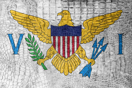 virgin islands: Flag of the U.S. Virgin Islands, on a luxurious, fashionable canvas