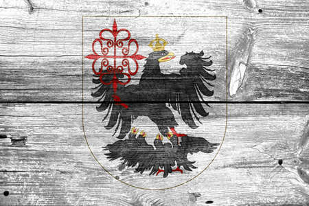 buenos aires: Flag of Buenos Aires, painted on old wood plank background Stock Photo