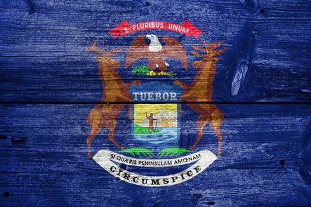 michigan flag: Flag of Michigan State, painted on old wood plank background Stock Photo