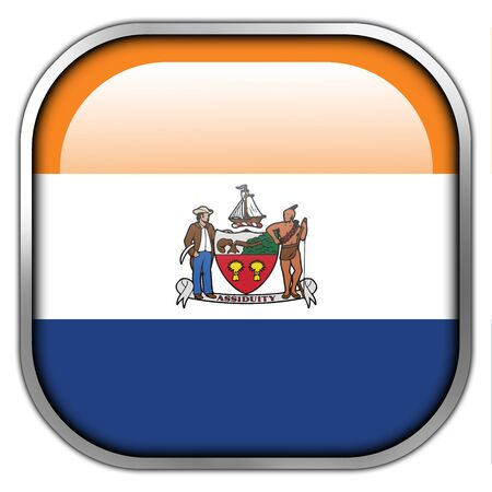 albany: Flag of Albany, New York, square glossy button