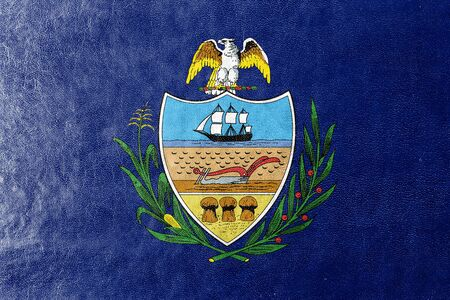 allegheny: Flag of Allegheny County, Pennsylvania, USA, painted on leather texture