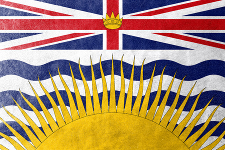 Flag of British Columbia Province, Canada, painted on leather texture