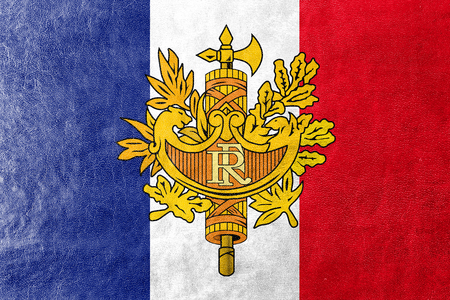 polity: Flag of France with National Emblem, painted on leather texture