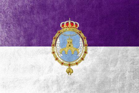 Flag of Loja, Spain, painted on leather texture