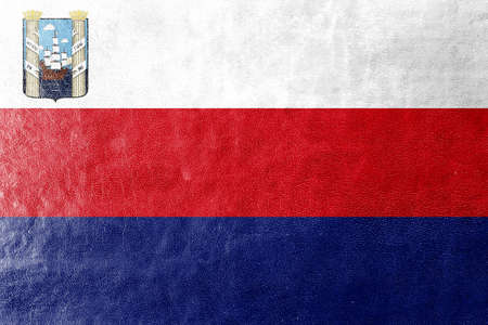 polity: Flag of Maracaibo, Venezuela, painted on leather texture Stock Photo