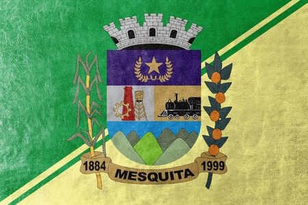 polity: Flag of Mesquita, Rio de Janeiro, Brazil, painted on leather texture Stock Photo