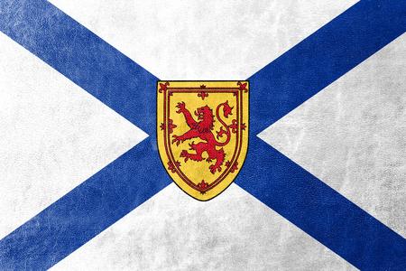 nova scotia: Flag of Nova Scotia Province, Canada, painted on leather texture