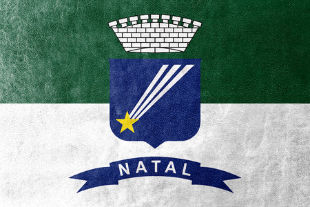 natal: Flag of Natal, Rio Grande do Norte, Brazil, painted on leather texture