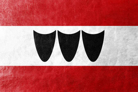 trebic: Flag of Trebic, Czechia, painted on leather texture Stock Photo